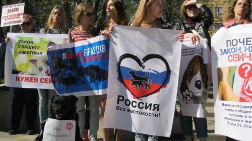 Rally of zoo activists in Rostov-on-Don, April 14, 2018. Photo by Konstantin Volgin for the Caucasian Knot