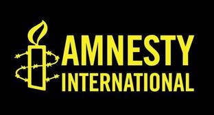 Logo of the Amnesty International, screenshot of the website https://www.amnesty.org