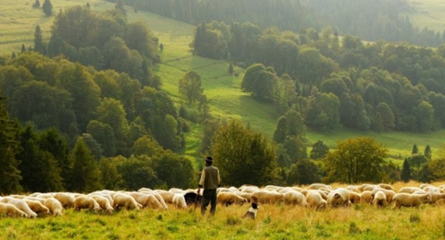 Dagestani villagers associate conflict over pastures with demarcation of border with Chechnya