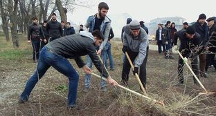 Community works in Chechnya. Photo: press service of the Chechen Government. https://gov.mk95.ru/index.php?component=mk_gov_front&page=11&id=70712